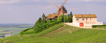 Day Trips to French Wine Regions